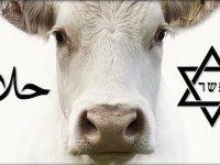 Kosher vagy Halal? Mi a különbség?