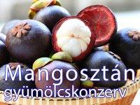 Mangosztán, Királygyümölcs Konzerv, 565 g
