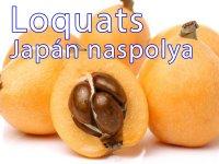 Loquats - a Japán Naspolya 567 g