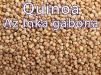 Quinoa, Bio, az Inkák gabonája