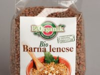 Barna Lencse, Bio