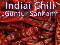 Chili - Indiai Guntur Sannam