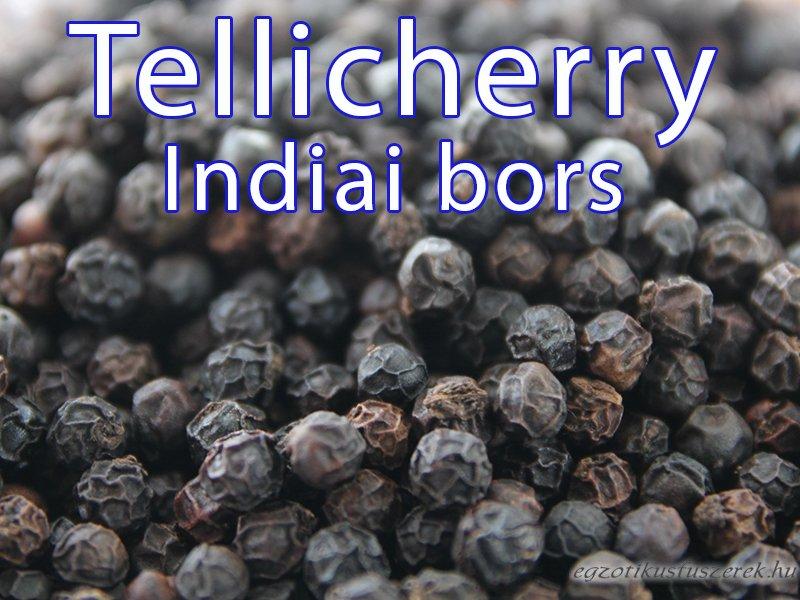 Tellicherry Bors, Indiai Bors